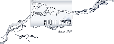 Logo Night River design studio